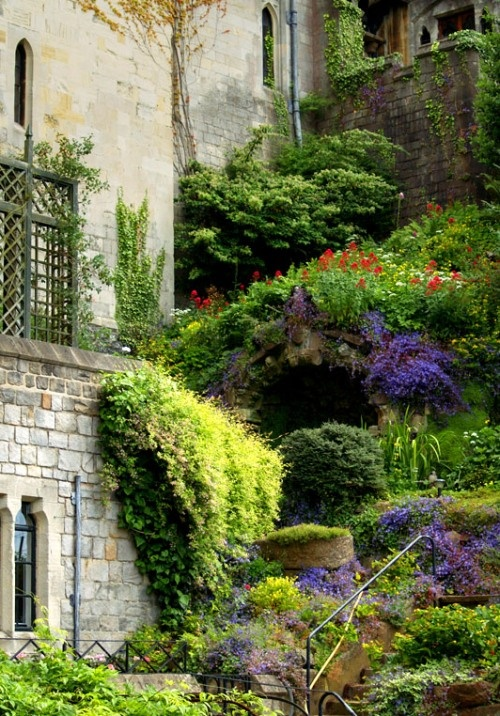 Amazing vertical garden