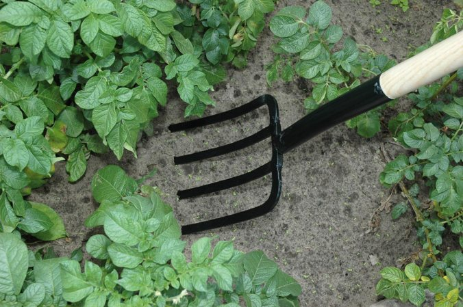 Digging fork